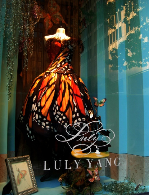 LulyYangwindow