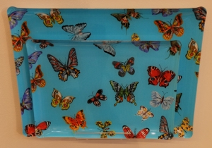 Butterfly trays blue