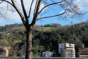 Bilbao hillside