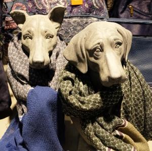 dogs-w-scarves